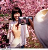 An Asian woman having her photo taken in front of cherry blossom