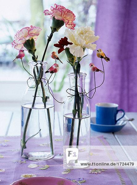 nelken in glasflaschen kleine v gel als deko lizenzfreies bild bildagentur f1online 1724479. Black Bedroom Furniture Sets. Home Design Ideas