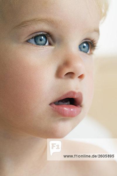 baby 12 24 monate blaue augen blonde haare portrait sieht zur seite lizenzfreies bild. Black Bedroom Furniture Sets. Home Design Ideas