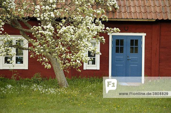schwedisches holzhaus auf land schweden lizenzfreies. Black Bedroom Furniture Sets. Home Design Ideas