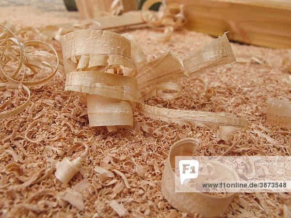 douglasienholz abfaelle abfallprodukt aufgerollt aus close ups closeups douglasie gebogen gebogener gerollt handwerk hobeln hobelnd kaufen berlin