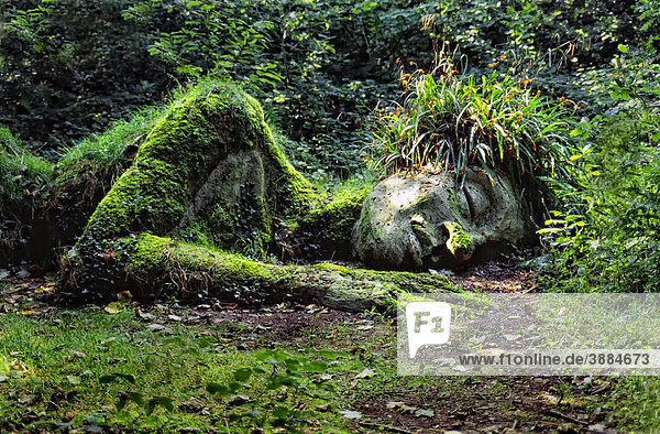cornwall heligan the lost gardens of heligan united kingdom waldgeist garten skulptur. Black Bedroom Furniture Sets. Home Design Ideas