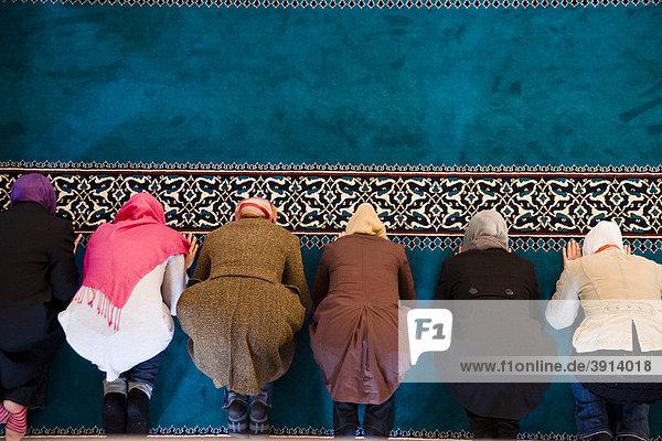 muslimische frauen in deutschland kennenlernen Islamische kleidung online hijab und abaya mode von top-marken bestellen im muslim shop - neueste trends • beste mode, bester preis riesen auswahl an islamische kleidung, jilbab und kaftan bei islamische-kleidungen.