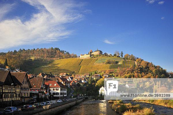 fistata Gernsbach(Baden-Württemberg)