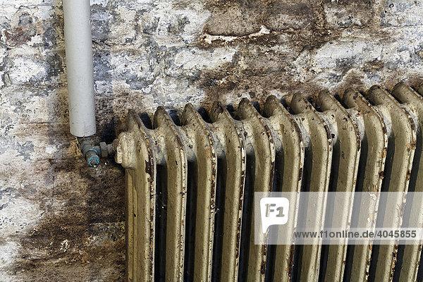 deutschland europa heizungsanlage vor modernisierung vor feuchter kellerwand vor renovierung. Black Bedroom Furniture Sets. Home Design Ideas
