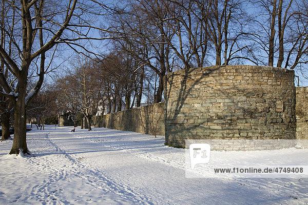 deutschland europa nordrhein westfalen sauerland soest wallanlage stadtmauer im schnee. Black Bedroom Furniture Sets. Home Design Ideas