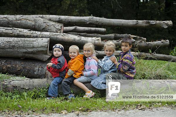 5 kinder 2 bis 6 jahre sitzen dem alter nach hintereinander auf einem baumstamm im wald. Black Bedroom Furniture Sets. Home Design Ideas
