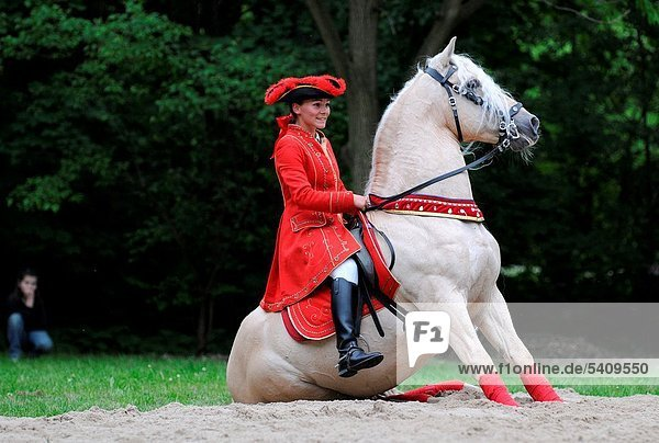 hauptstadt barock frau jahrhundert kost m faschingskost m mitfahren polen reiten pferd. Black Bedroom Furniture Sets. Home Design Ideas