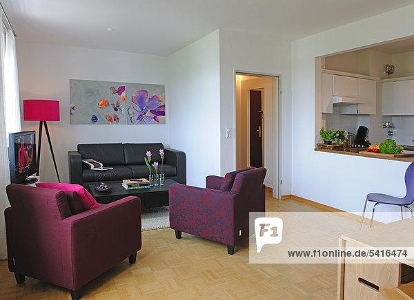k che modern offen organisation wohnzimmer zimmer lizenzfreies bild bildagentur f1online 5416474. Black Bedroom Furniture Sets. Home Design Ideas