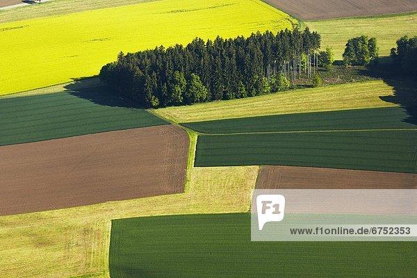 Felder wiesen und waldfl che luftbild for Vogelperspektive englisch