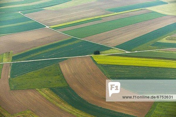 Verschiedene felder und ackerfl chen luftbild for Vogelperspektive englisch
