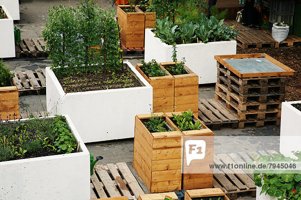 deutschland europa frankfurt am main hessen urban gardening urbaner gartenbau. Black Bedroom Furniture Sets. Home Design Ideas