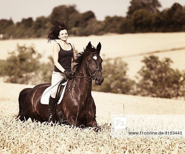 Reiterin auf Pferd - Lizenzpflichtiges Bild - Bildagentur ...