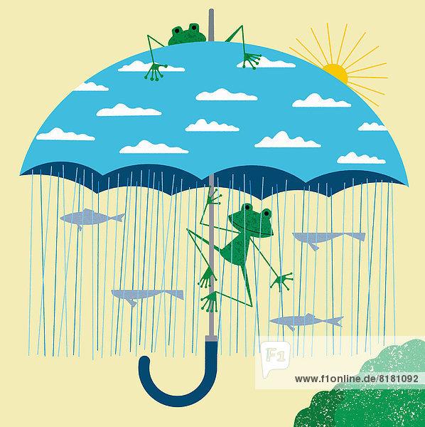 Frösche unter Regenschirm mit Regen darunter und blauem Himmel darauf