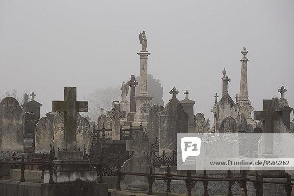 durchsichtig,transparent,transparente,transparentes,Himmel,Victoria,Australien,Friedhof,Melbourne