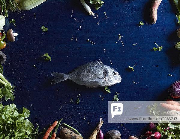 Fisch,Pisces,über,Gemüse,blau,schießen,gerade,Tisch