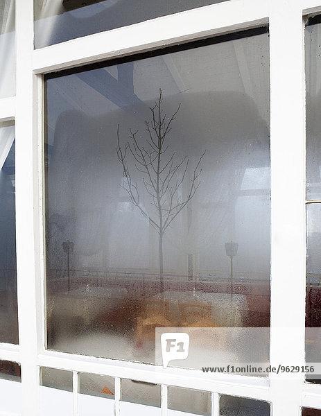Durchs Fenster Beim Ficken Zusehen