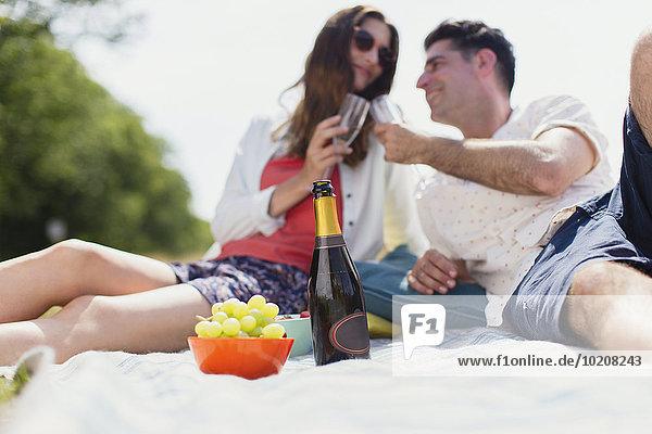 Decke,Picknick,zuprosten,anstoßen,Champagner