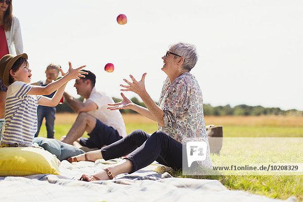 Decke,Picknick,Großmutter,Enkelsohn,Feld,Sonnenlicht,Apfel,jonglieren