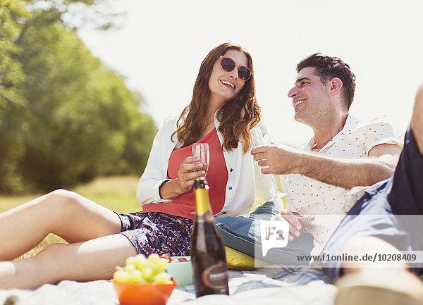 Decke,Picknick,Feld,Sonnenlicht,trinken,Champagner