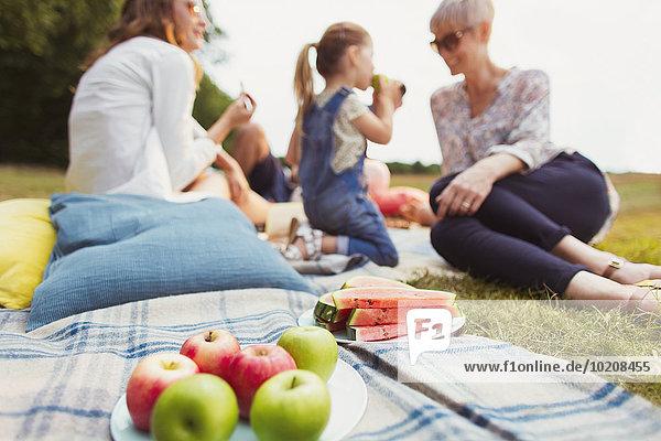 nahe,Decke,Picknick,Wassermelone,Apfel