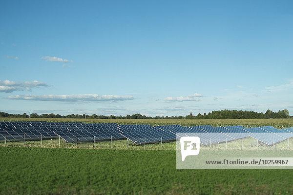Feld,Sonnenenergie,Reihe