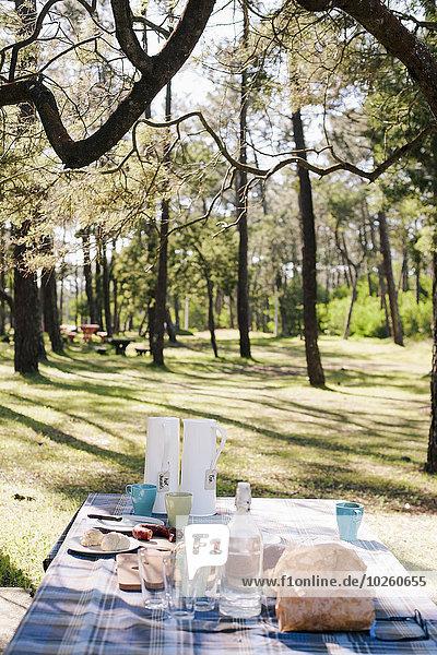 geben,Wald,Tisch,Frühstück