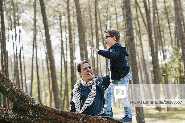 Fröhlichkeit,Menschlicher Vater,Sohn,Hilfe,Baum,Wald,klettern