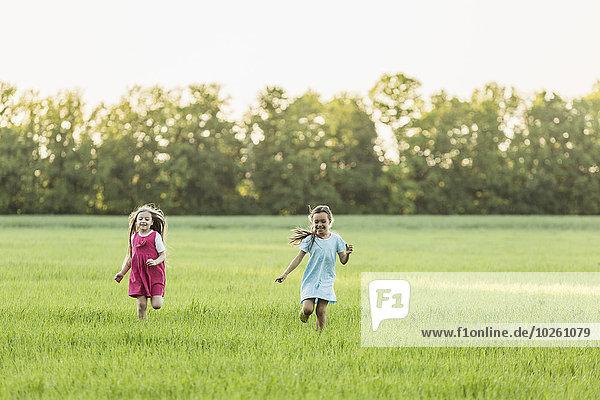 rennen,Feld,Mädchen,Wiese