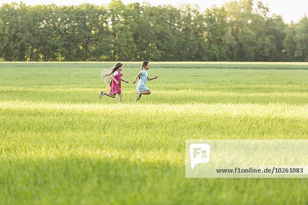 rennen,Feld,Ansicht,Seitenansicht,Mädchen,Wiese