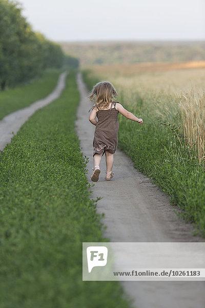 gehen,folgen,klein,Natur,Rückansicht,Ansicht,Länge,Mädchen,voll
