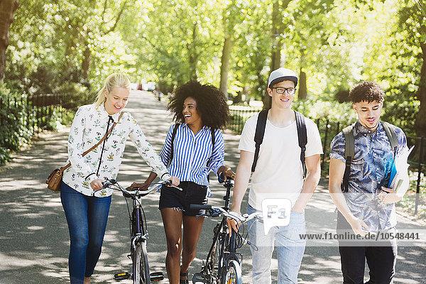 Freundschaft,gehen,Fahrrad,Rad