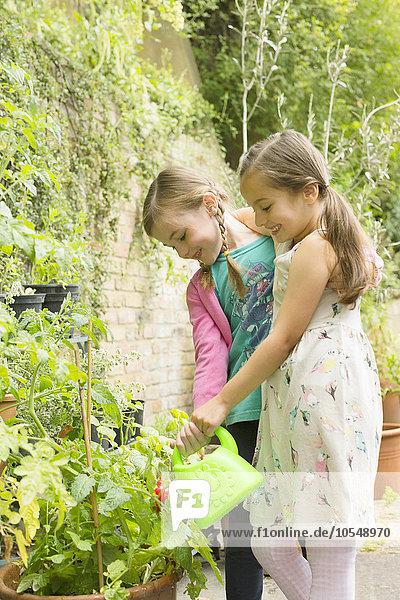 Wasser,Pflanze,Garten,Mädchen