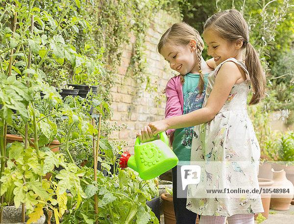 Wasser,umarmen,Pflanze,Garten,Mädchen