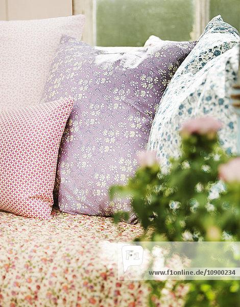 Anschnitt,Außenaufnahme,Bett,Botanik,Close-up,Dekoration