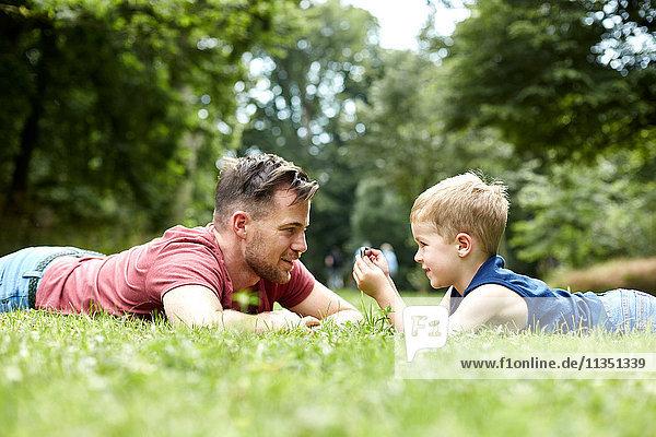 Vater und Sohn liegen mit Handy auf einer Wiese
