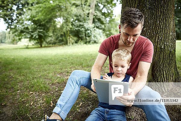 Vater und Sohn im Park schauen auf Tablet