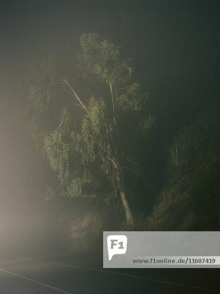 Außenaufnahme,beleuchtet,Das Unbekannte,Dunst,Farbe,Fernverkehrsstraße