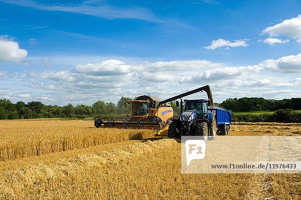 Agrarland,Anzahl,Außenaufnahme,Bauernhof,Betreten verboten,binden