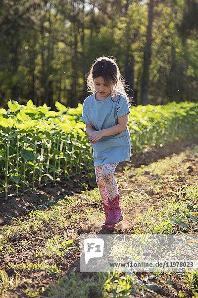 1,5 bis 9 Jahre,7 bis 8 Jahre,Agrarland,Anzahl,Außenaufnahme