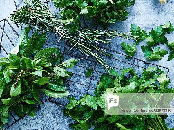 Altersunterschied,Anzahl,Bioprodukt,Botanik,Bündel,Dekoration