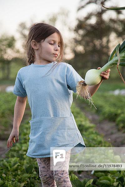 1,5 bis 9 Jahre,7 bis 8 Jahre,Agrarland,Anzahl,aufheben