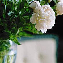 Blume,Bündel