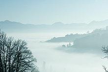Misty Berglandschaft