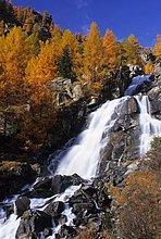 Italien, Trentino Alto Adige, Nationalpark des Stilfserjochs, äußersten Westen des Tal, Wasserfall und Lärche Bäume im Herbst
