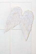 Flügel hängen an Fensterausschnitt