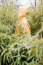 Regenmantel ,Mann ,waten ,Pflanze