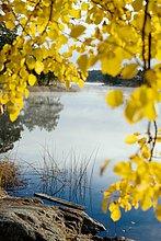 Herbst Tyreso Schweden