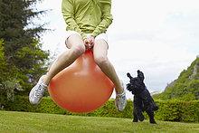 Frau ,Hund ,Ball Spielzeug ,lebhaft ,spielen