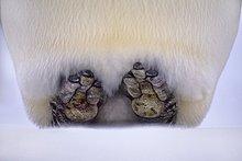 Kaiserpinguin stehend auf Fersen zur Reduzierung von Wärmeverlusten, Aptenodytes Forsteri, Weddell Sea, Antarctica